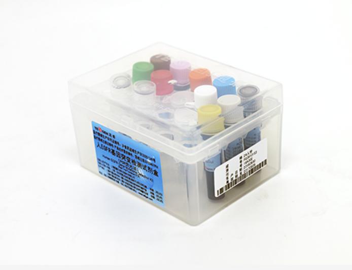 人EGFR基因突变检测试剂盒