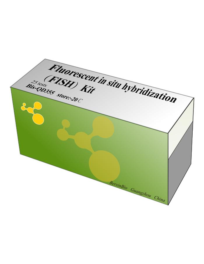荧光原位杂交(FISH)试剂盒