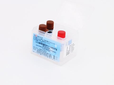 人乳头瘤病毒核酸检测试剂盒HPV2+12