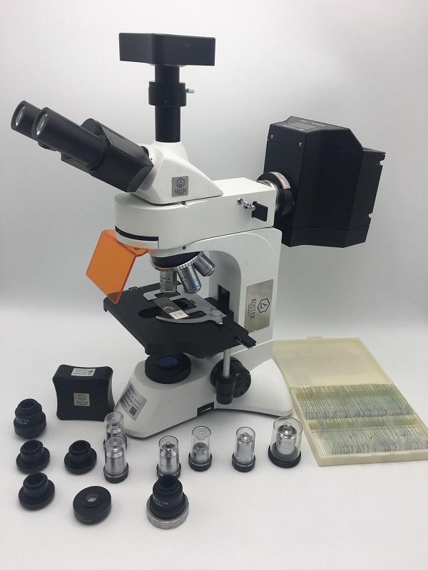 病理免疫荧光显微镜