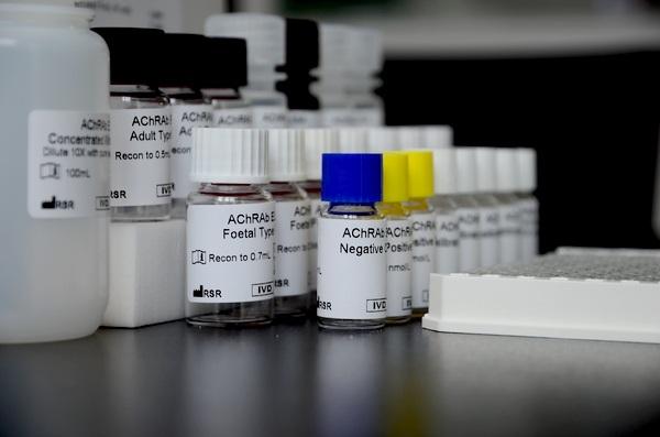 乙酰胆碱受体抗体(AChRAb)ELISA试剂盒