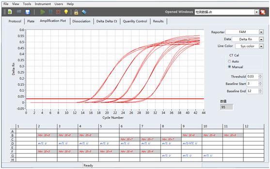 实时荧光定量PCR服务