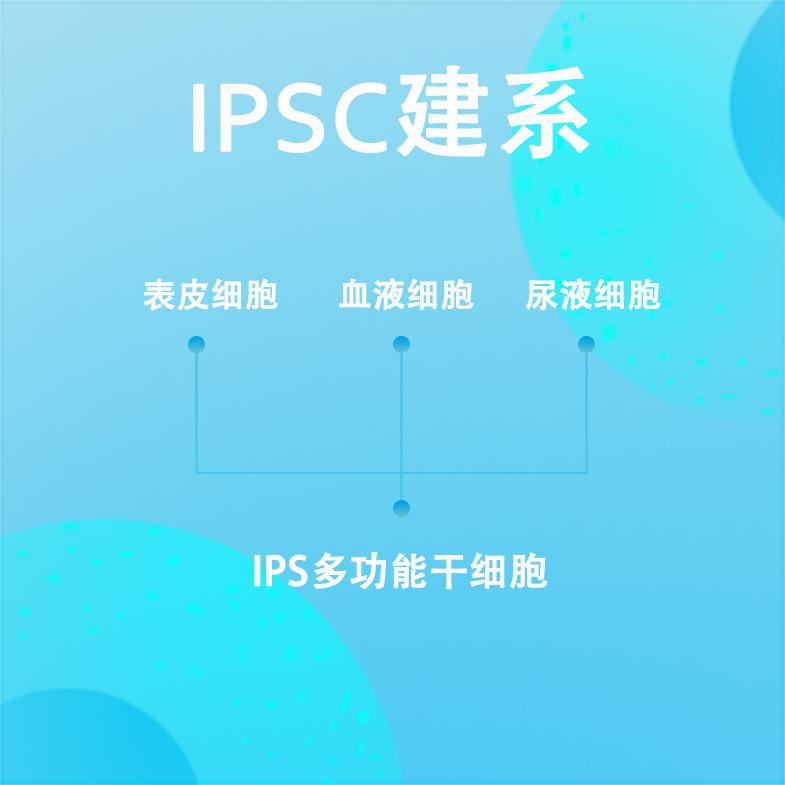 iPSC建系技术服务
