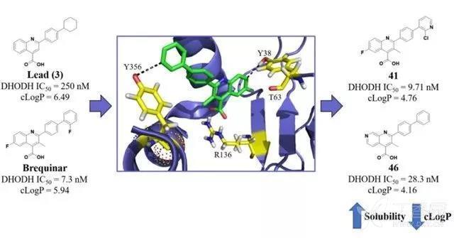 图1.化合物41和46的结构式(图片来源:《j. med. chem.》)