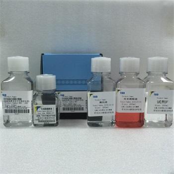 PCR检测试剂盒厂家