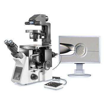 奥林巴斯 IX3-ICSI/IMSI 倒置显微镜
