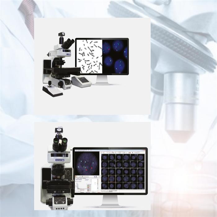 ASI 染色体分析系统