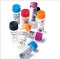 UDP-Xylose,UDP-木糖 CAS:3616-06-6