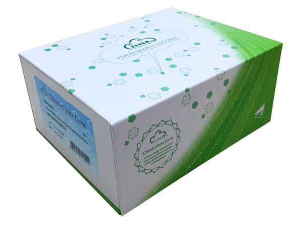 Rat Protein Kinase C Epsilon (PKCe) ELISA Kit