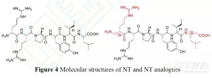 图三 这种结构不仅能够将多肽维持在-螺旋构象,并且可以调节-螺旋二聚体之间的疏水相互作用。 研究者使用胰蛋白酶或胰凝乳蛋白酶检测多肽的稳定性。 结果发现所有单体肽在0.02molL-1胰蛋白酶或胰凝乳蛋白酶中被快速降解,半衰期为0.1~1h。研究者们增加了蛋白酶浓度,发现即使在7 molL-1 蛋白酶浓度中2h,7=7二聚体仍然保持活性。 整体来说6=6、7=7 和8=8三个二聚体的稳定性都得到了明显的改善。 有趣的是,本研究并没有观察到肽链的-螺旋构象与稳定性之间存在关系。 但是发现7=7和