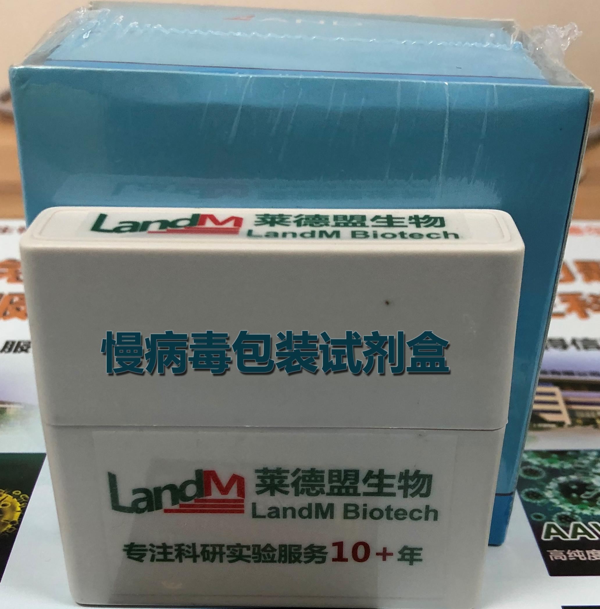 慢病毒包装试剂盒