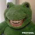 protosil
