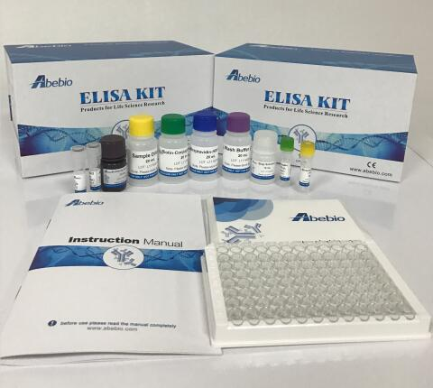Human Adiponectin (ADP) ELISA Kit