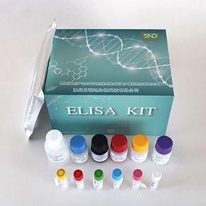 小鼠谷丙转氨酶(ALT)试剂盒(ELISA)