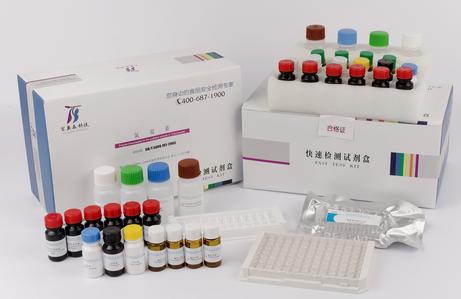 cGMP试剂盒