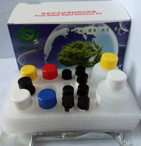 SCF试剂盒