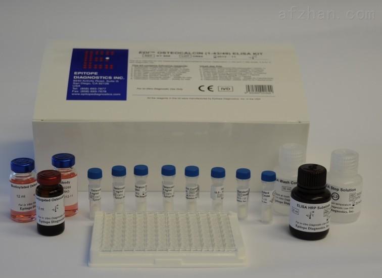 AMH试剂盒