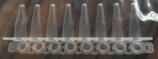 0.2mlPCR八联管薄壁管配荧光定量专用盖子