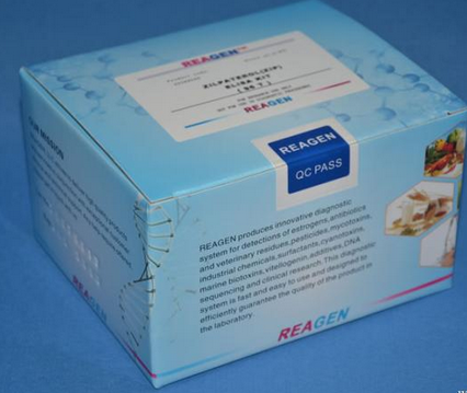 ANP试剂盒