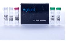 Agilent 安捷伦(Stratagene)600675/600679 Herculase II Fusion DNA Polymerases DNA聚合酶