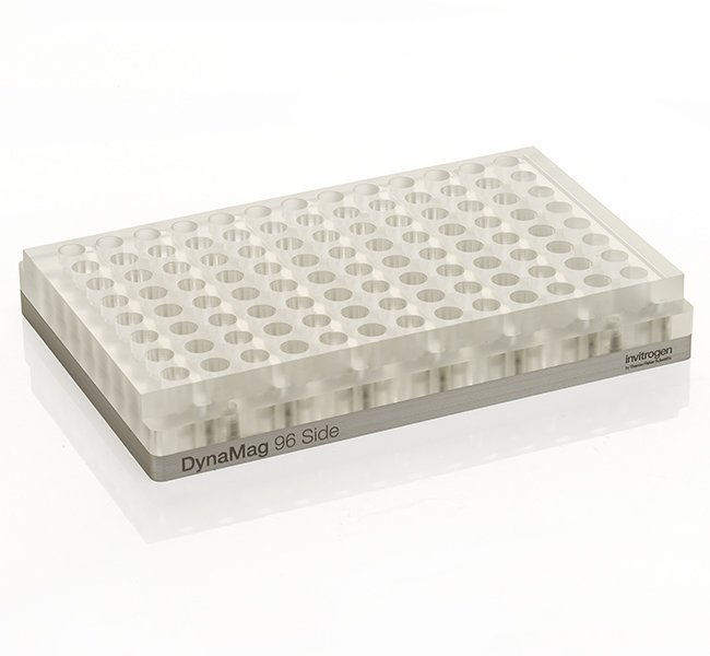 ThermoFisher 12331D DynaMag™-96 Side Magnet 96孔