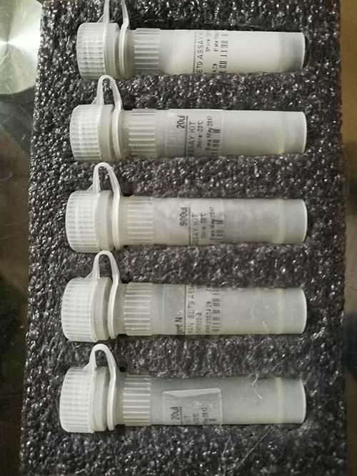 免疫荧光细胞流式仪分析试剂盒