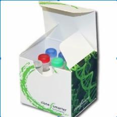 CloneSmarter无缝克隆试剂盒5次试用