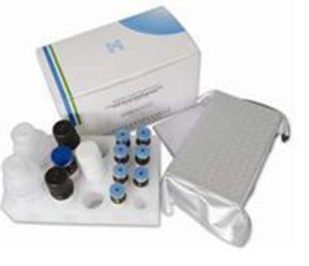 载玻片细胞组蛋白H3-K4甲基化荧光显微镜检测试剂盒 (针对一甲基)