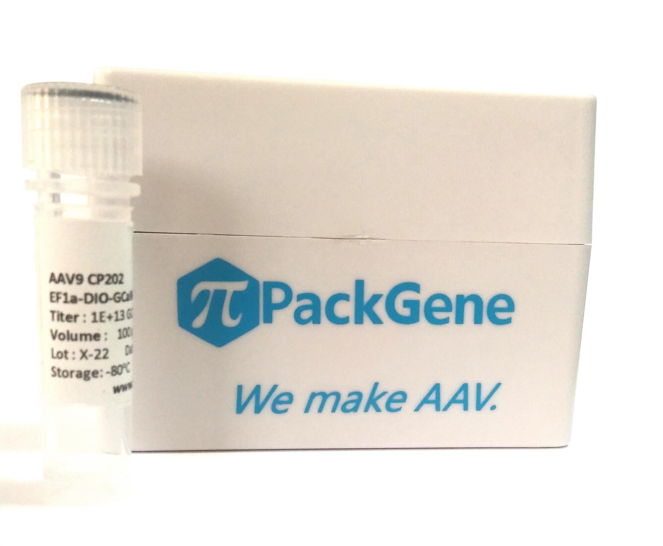现货AAV/预制AAV/腺相关病毒现货