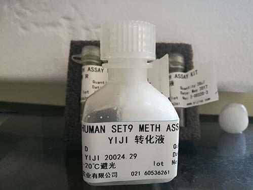 人脂蛋白脂酶(LPL)ELISA试剂盒
