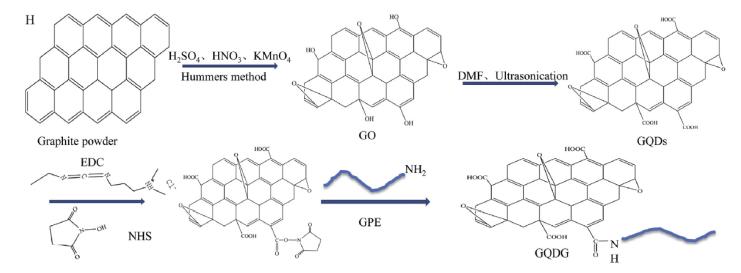多肽/短肽接枝、偶联、共价结合到纳米材料