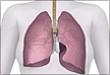 呼吸科临床用药经验集锦