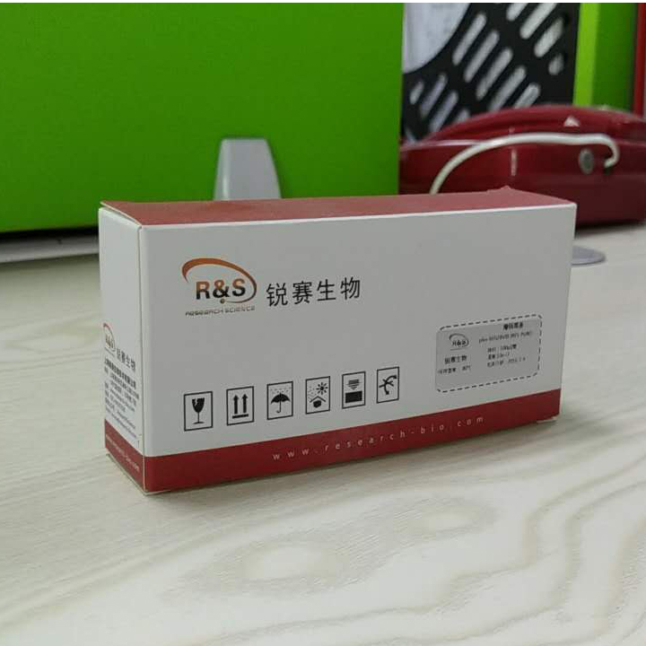 CCK-8 细胞增殖与毒性检测试剂盒