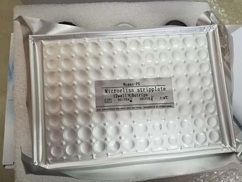 植物基因组提取试剂盒