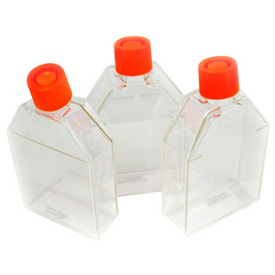 75cm细胞培养瓶