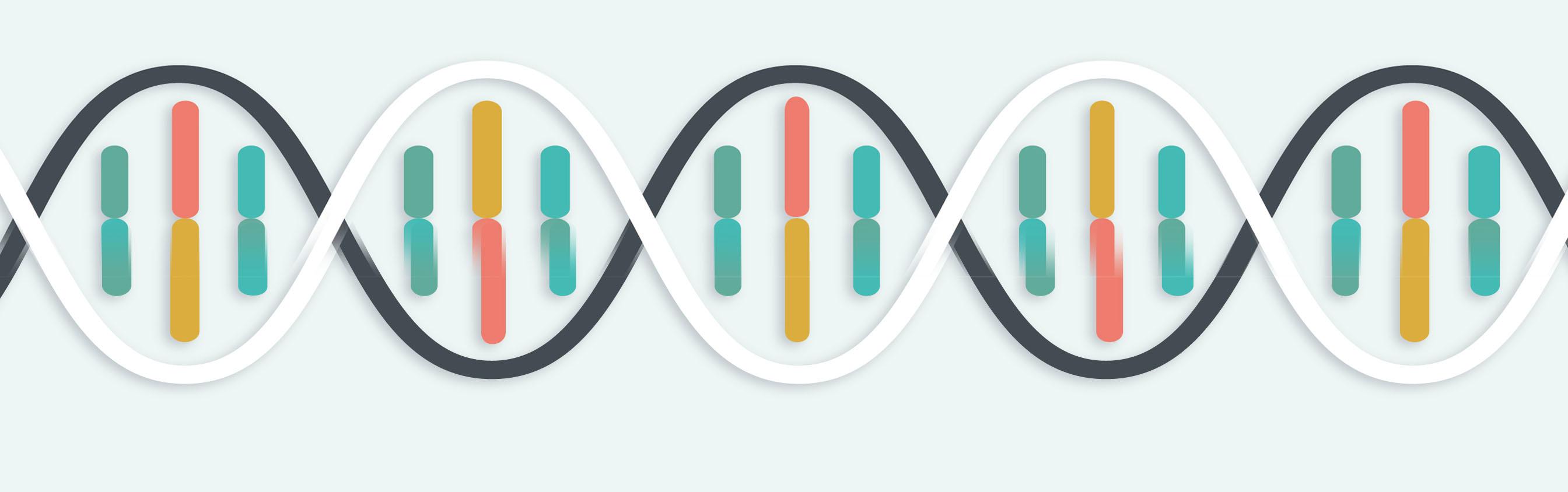 所有SNP基因分型服务(MassArray/AS-PCR/PCR-RFLP/HRM/TaqMan probe)
