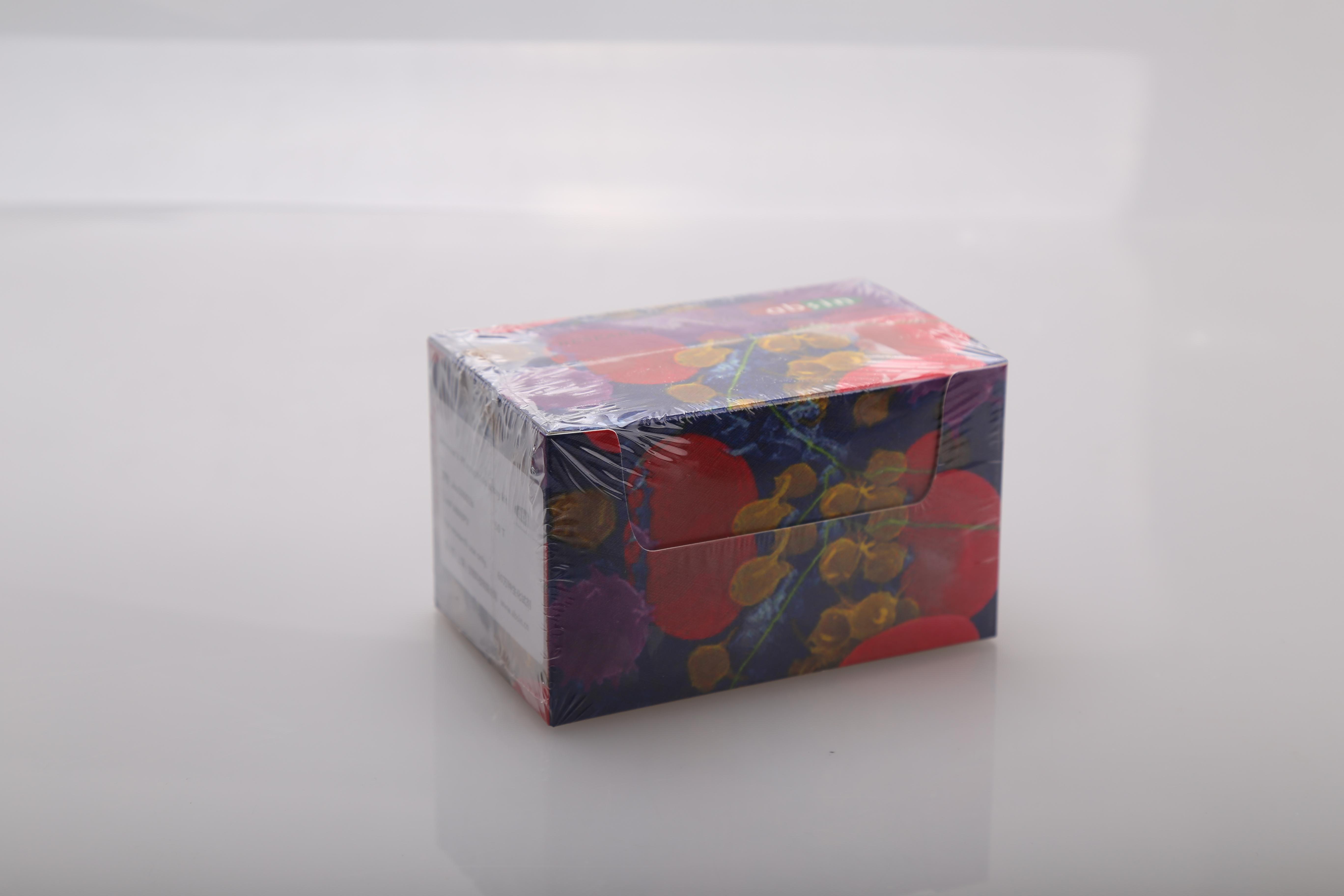 Annexin V 凋亡检测试剂盒