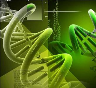 RNA干扰|腺病毒|腺病毒包装
