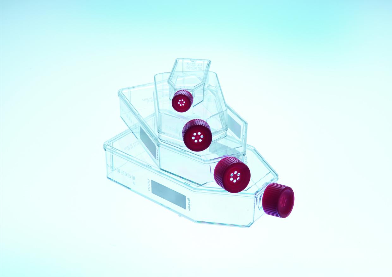 25cm²细胞培养瓶(标准盖/虑盖)