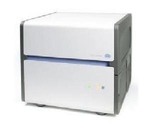 实时定量PCR (qPCR)服务
