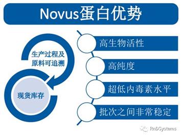 Novus蛋白