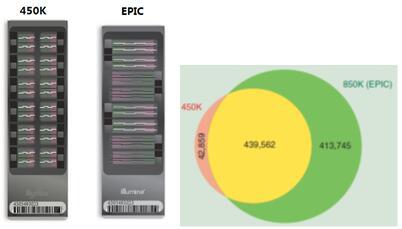 Illumina 850k (EPIC)甲基化芯片服务