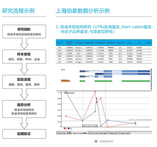 转录组测序应用—转录本的结构及结构变异研究