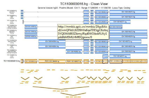 Clariom™ D 芯片服务解决方案