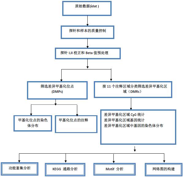 DNA甲基化芯片服务