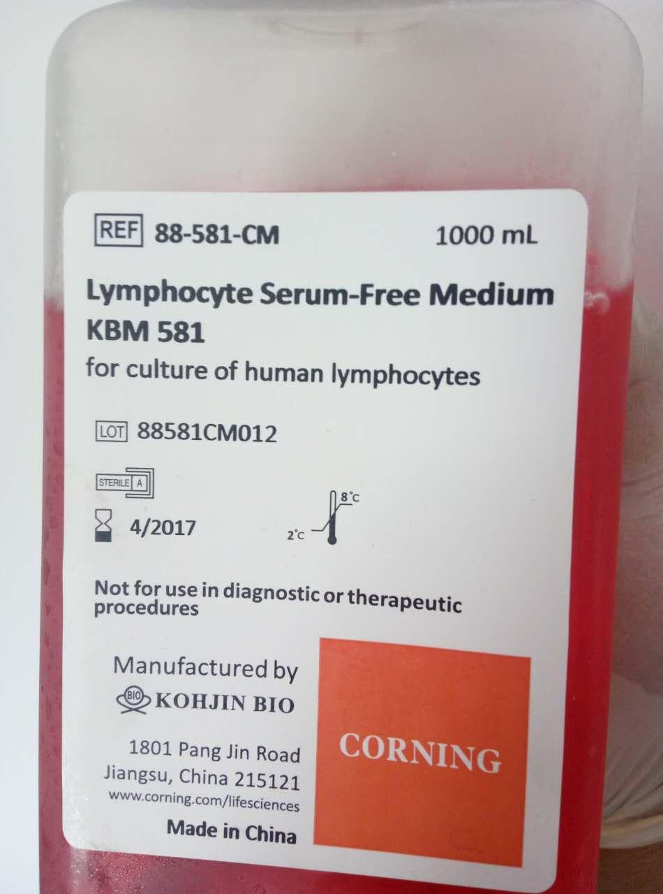 淋巴细胞无血清培养基KBM581 Lymphocyte Serum-Free Medium KBM581