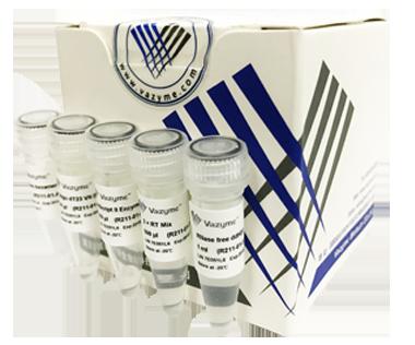 【正品直销,售后保障】(第一链cDNA合成试剂盒)HiScript® II 1st Strand cDNA Synthesis Kit(HiScript® II