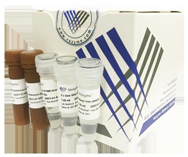【正品直销,售后保障】(Vazyme染料法一步qRT-PCR试剂盒)HiScript® II One Step qRT-PCR SYBR® Green Kit