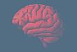 5 张表快速上手:2017 实体瘤脑膜转移诊治指南