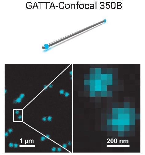 Confocal共聚焦显微镜纳米标尺